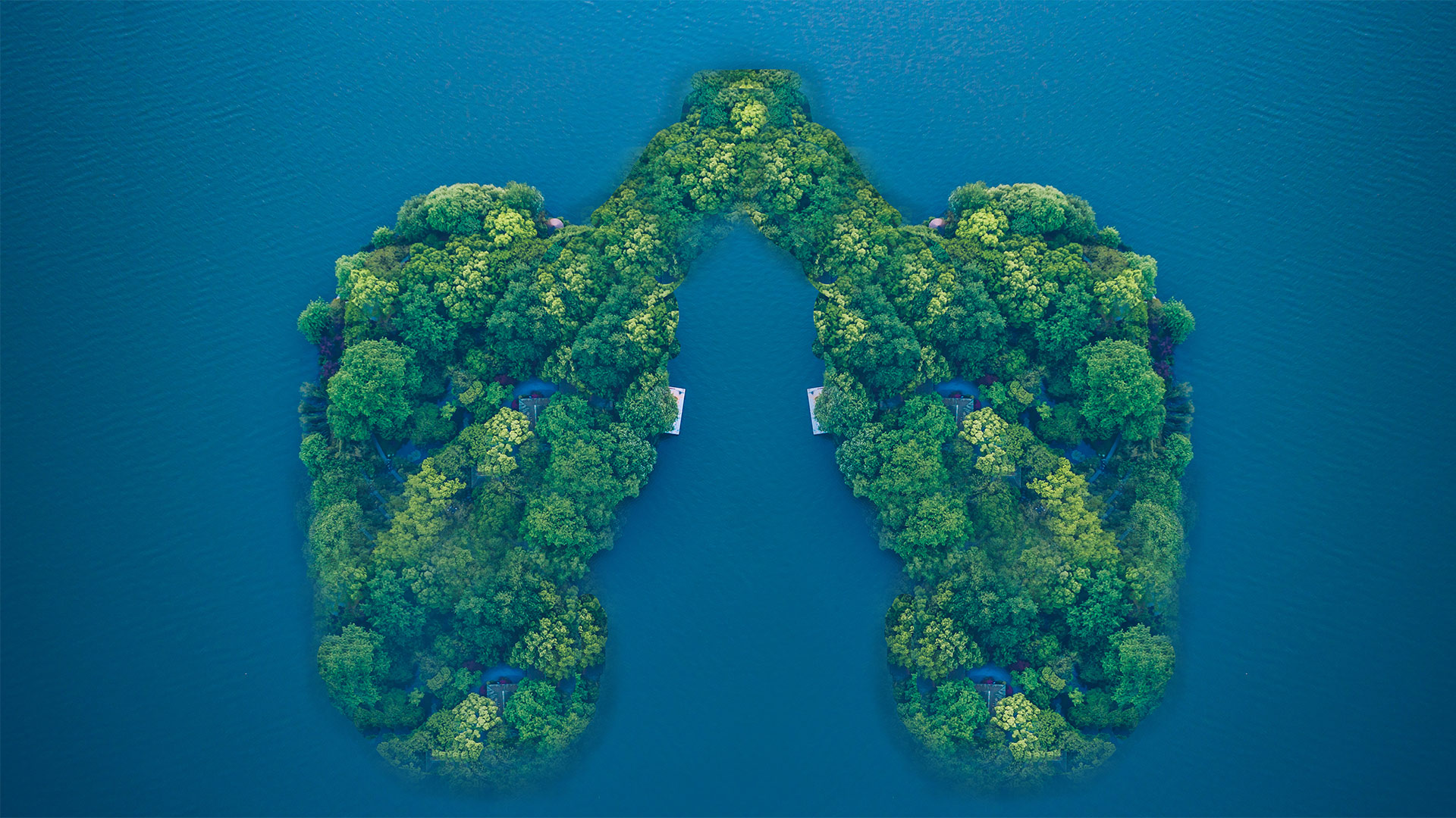 低碳 環保